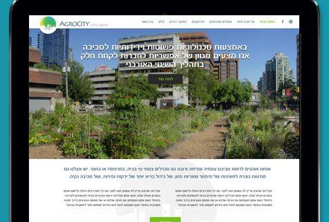 עיצוב בנייה ופיתוח אתר